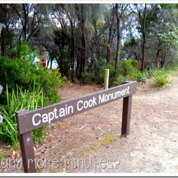 Captain Cook Monuments