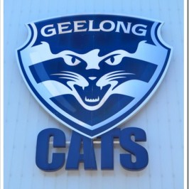 A Quick Stop at the Geelong Cats Stadium