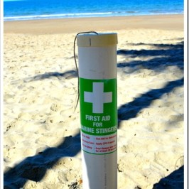 Etty Bay on the QLD Coast