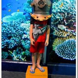 The Townsville Aquarium