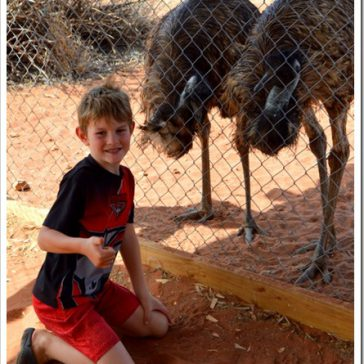 Road Tripping: Alice Springs