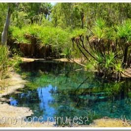 A Quick Swim in Bitter Springs