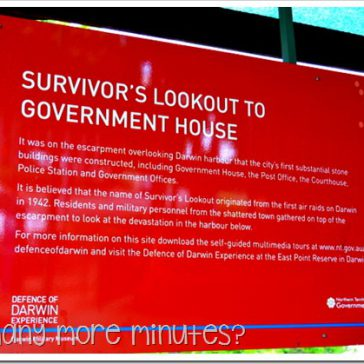 Survivors' Lookout & Govt House