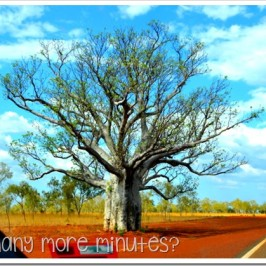 A Few Stops Around Kununurra